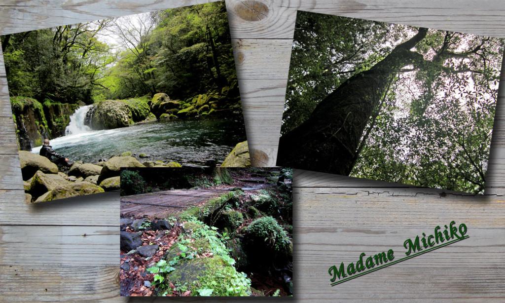 菊池渓谷のコピー
